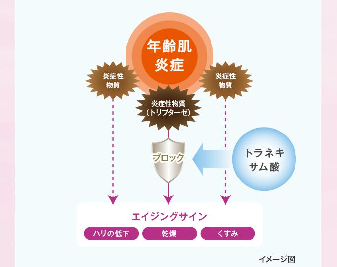 point_01_6 (1)