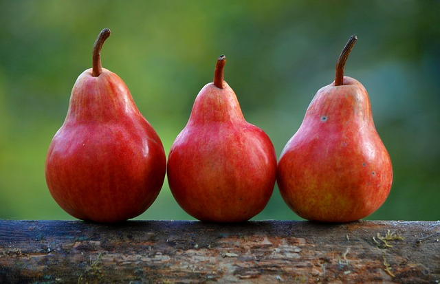 pears-1159014_640